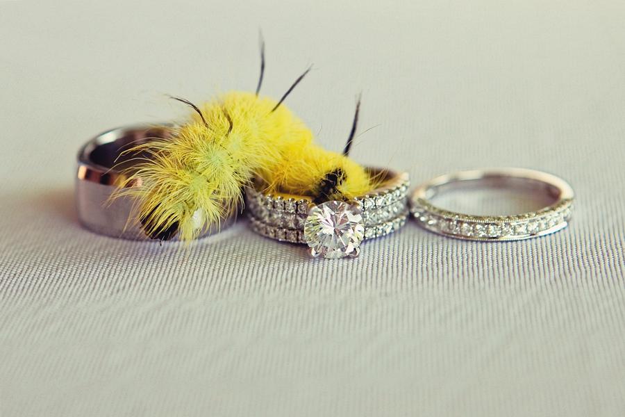 Wedding Rings by Kokoro Photography