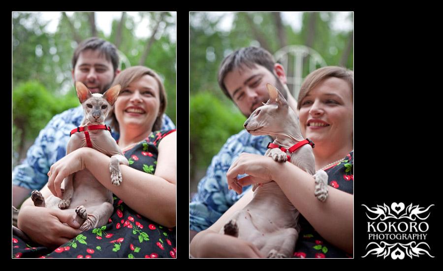 Denver Wedding Cat Photography
