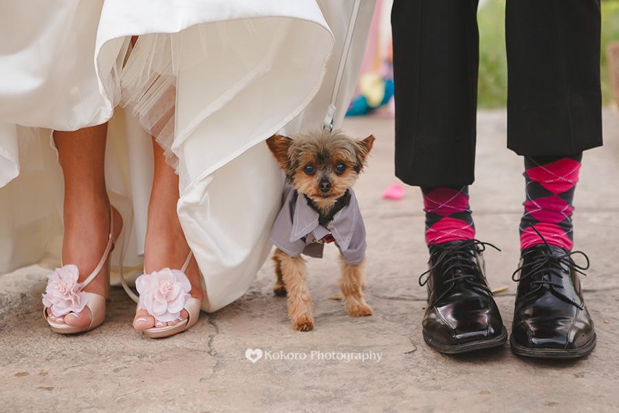 Wild Basin Inn Wedding0051