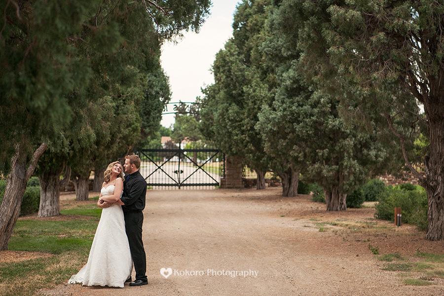 Highlands Ranch Mansion Wedding