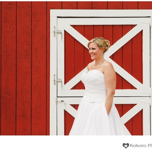 Sarah and David- Crooked Willow Farms Wedding