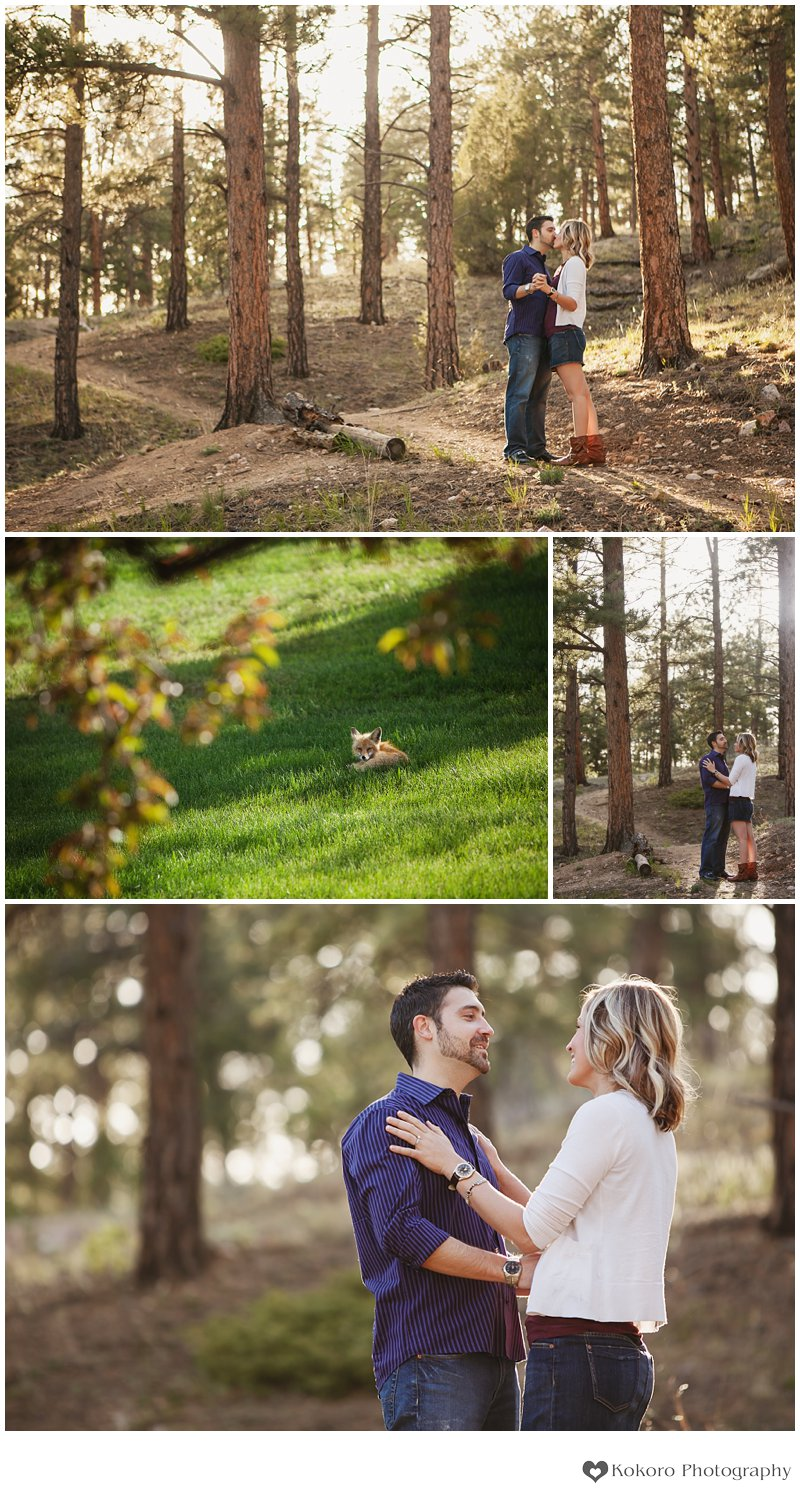 Engagement Session in Evergreen Colorado by Kokoro Photography