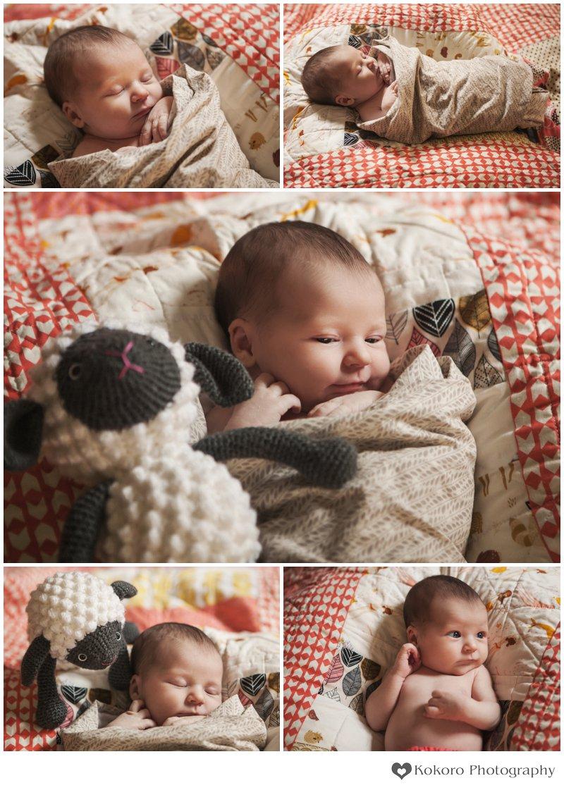 Denver Newborn Photography0014.jpg
